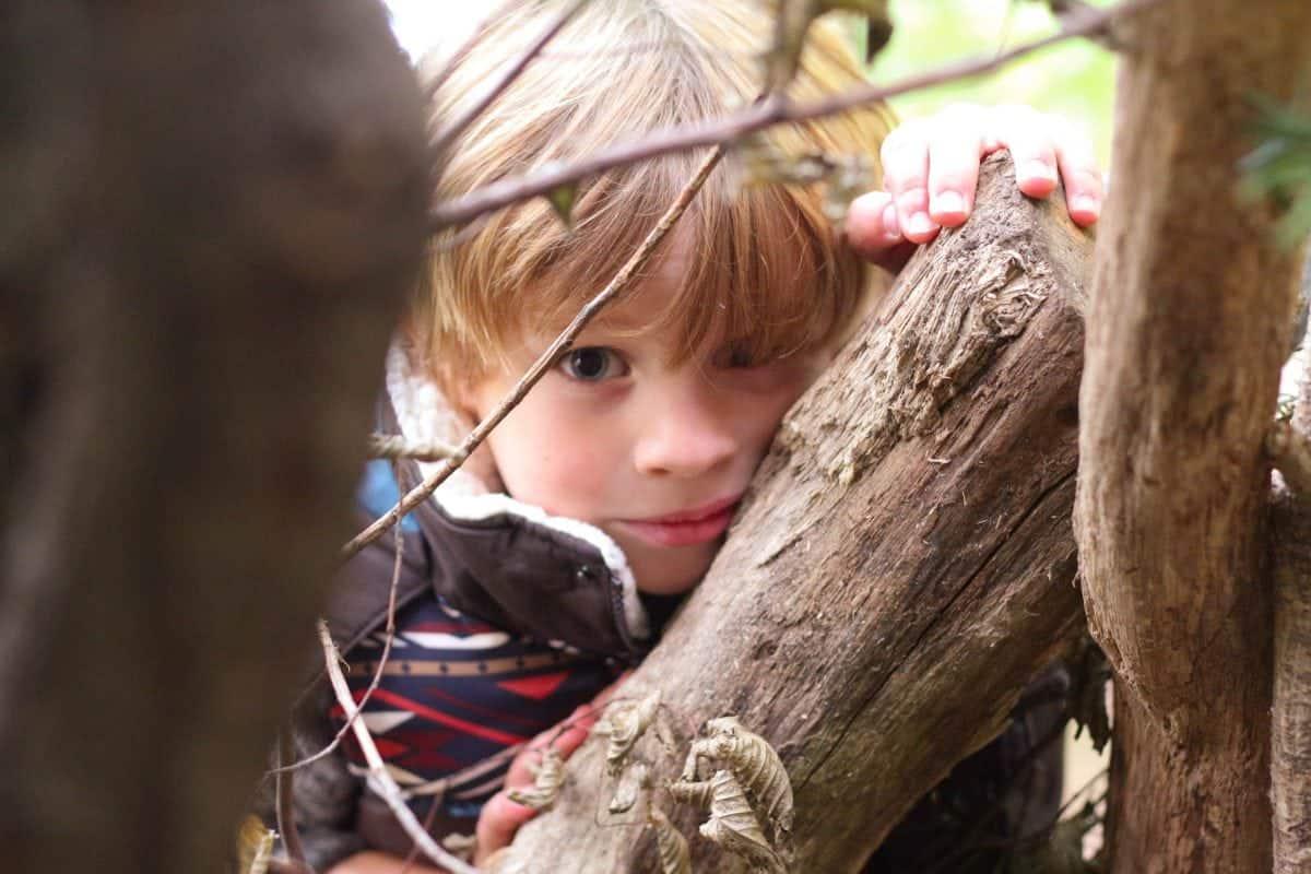 Hatchlands Park National Trust Geocaching