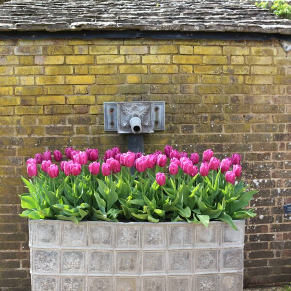 Wakehurst Place Haywards Heath National Trust Review