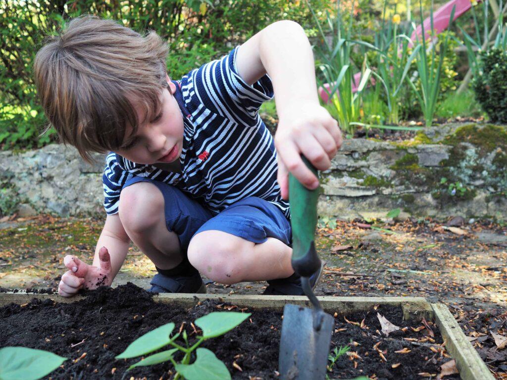 vegetable garden with kids
