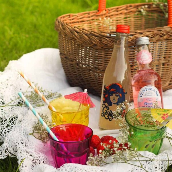 Top Tips for Picnics
