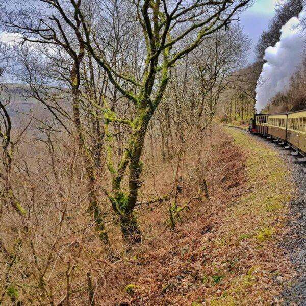 railway old fashioned steam railway
