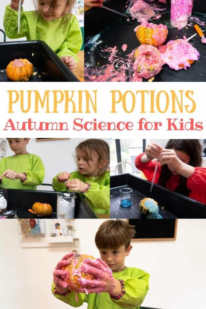 pumpkin photos science activity for kids