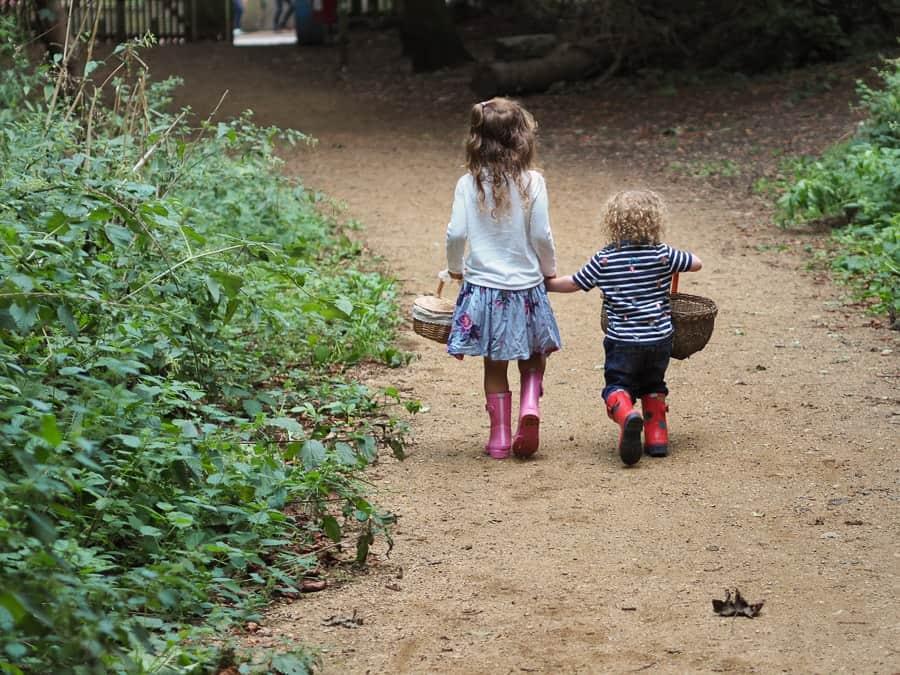 woodland walks for kids
