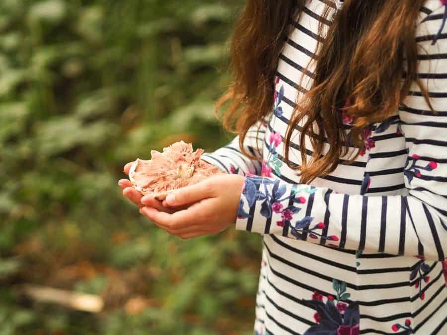 girl holding a mushroom woodland crafts for kids