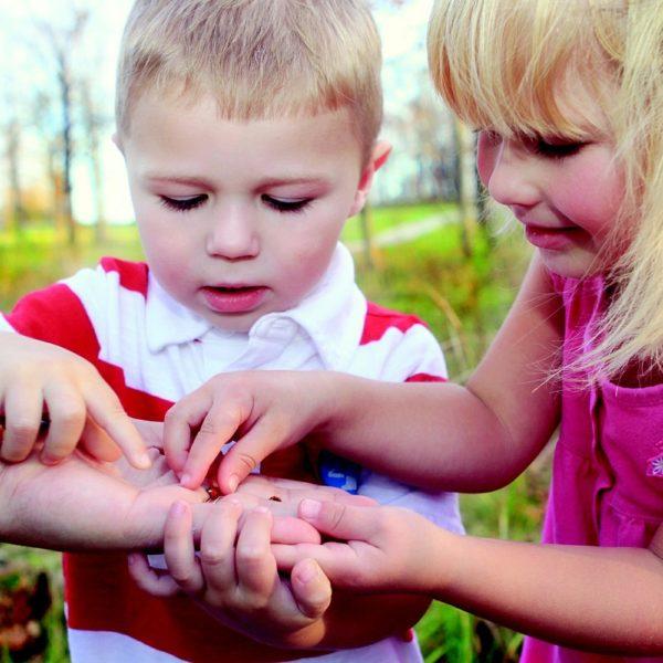 nature in garden kids